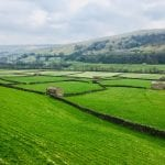 Farmland Yorkshire Dales